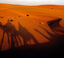 Caravan shadows by David Pinzer