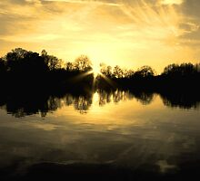 Gold Star on the lake - sunset by Penny V-P