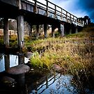 Rustic Bridge - Spanning a creek in regional NSW by Rob McDougall