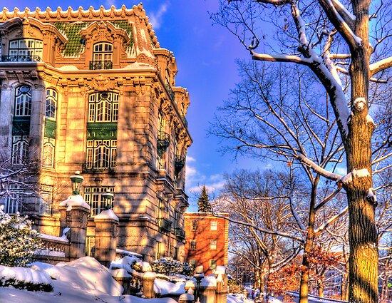 Just another winter day! by LudaNayvelt