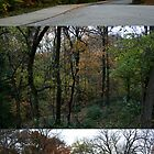 autumn triptych by iannarinoimages