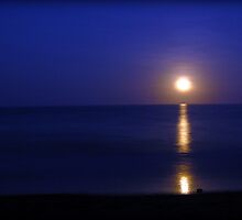 Moon Rise - Etty Bay, Nth Qld by Giovanna Devlin