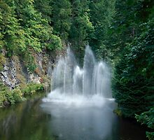 Butchart Gardens Fountain by Richard  Leon