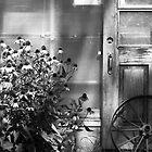 Rustic corner b&w by Aimelle