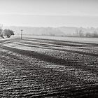 Slices of winter # 12 by clickinhistory