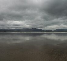 Inch Beachscape by wideeyes
