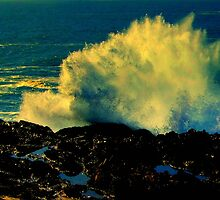 Mendocino Coast, N. California, #N30 by Ascender Photography