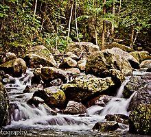 Korrumbyn Creek by kwill