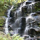 Sylvia Falls, Blue Mountains, NSW by DashTravels