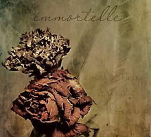 Immortelle by thinkingoutloud