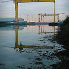 Harland &amp; Wolff by Chris Cardwell