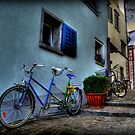 A Bicycle Built For Two by Luke Griffin