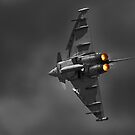 Typhoon fighter by Rob Lodge