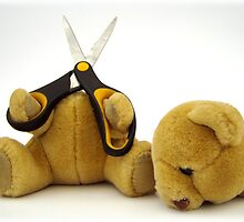 Suicide Bear by Robert Redman