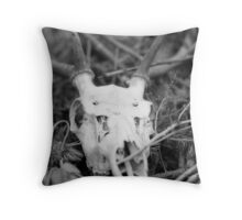 You'll Stumble In My Footsteps Throw Pillow