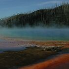 Lodgepole snags & Algae, Midway Geyser Basin by richardely