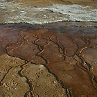 Sinter deposits, Midway Geyser Basin by richardely
