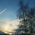 Winter Sky - Blakemere by robomeerkat
