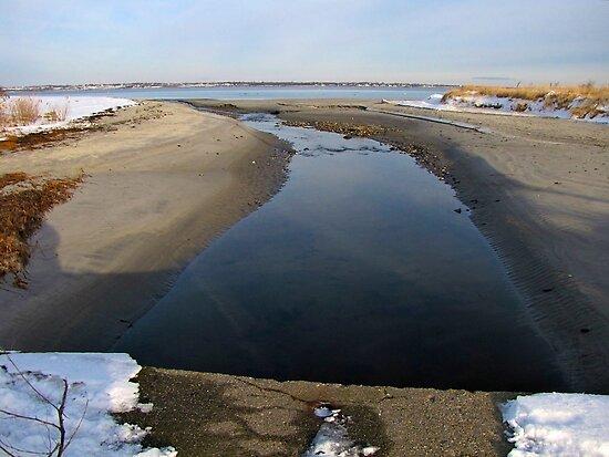 Seaward bound in winter by Nancy Richard