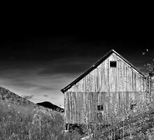 Pole Barn - Grafton Notch, Maine by Patrick Downey