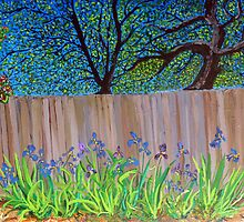 Irises in the backyard by JonMarc