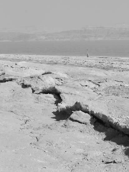 Dead Sea Salt by Adam Isaacson