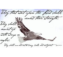 Flying Eagle Watercolor with Isaiah 40:31 Overlay Photographic Print