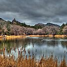 Winter Colors at Granite Basin Lake by Diana Graves Photography
