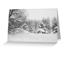 Winter scape Greeting Card