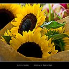 Sunflowers - - Posters & More by Maria A. Barnowl