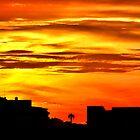 Wickham Sunset - Newcastle NSW Australia by Bev Woodman