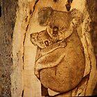 Koala Mum & Bub by aussiebushstick