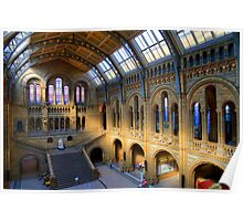Natural History Museum - A Different Side - London Poster