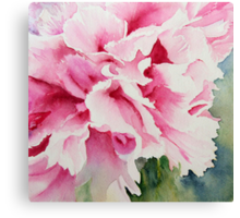 Perfect Pink Peony Canvas Print