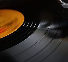 Vinyl Lives On by Cathy O. Lewis