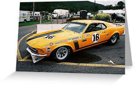 1970 Trans-Am Boss 302 Mustang by Steve Mezardjian