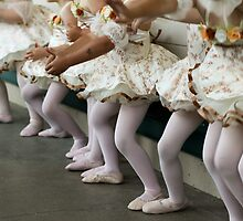 Baby Ballerinas by Denice Breaux