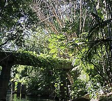 """Jungle"" - Disneyland CA by Aurora Vaz"