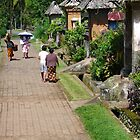 beautiful balinese village by supergold
