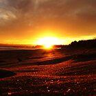Sunset of Summer Days by Joel Gogoll