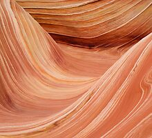 The Wave in the Coyote Buttes by Alex Cassels