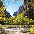 Virgin River in Zion by Alex Cassels