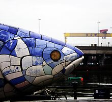 Belfast Fish by Alex Barry