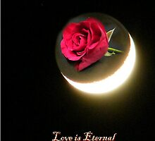 Love is Eternal, Like the Light from The Moon. by ElsT