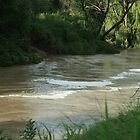Modderrivier,  Petrusburg, Free State, South Africa by Qnita