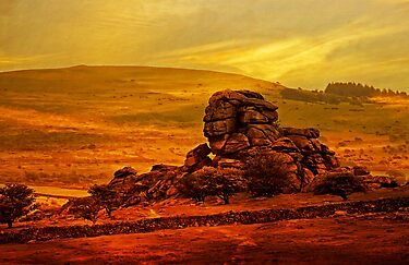 Vixen Tor, Dartmoor, UK by buttonpresser