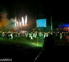 2011 FIREDANCE 149 by MARK HEAD