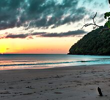 Sunkissing the Horizon - Etty Bay NQ by Giovanna Devlin