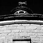 Wind Horse V by André Barker