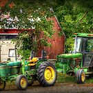 Big Deere and Lil Deere by Monica M. Scanlan